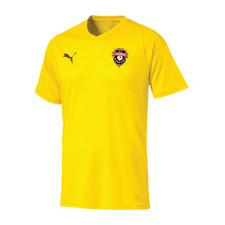 Lake Simcoe Puma Liga Core S/S Gk Jersey - Cyber Yellow