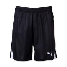 Puma Team Shorts w/o inner-slip