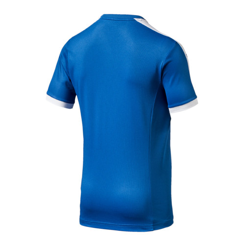 Puma Pitch SS Shirt