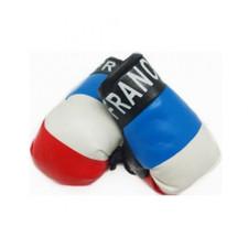 France - Mini Boxing Gloves