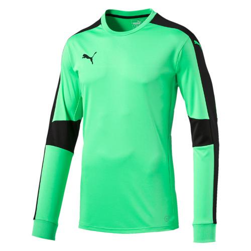 Puma Triumphant GK Jersey