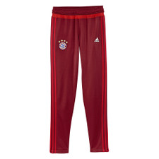 adidas Bayern Training Pant (Youth)